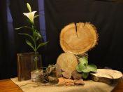 Vijfde Lijdenszondag 2017: We gebruiken een schijf van een boomstam als klok waarin we de jaarringen zien. Zij verraden de tijd die verstreken is, en verbeelden het thema bij de kindernevendienst: Het is 5 voor 12 Jezus voor Pilatus. Hoe eenzaam en verlaten moet Jezus zich gevoeld hebben. Jezus en Lazarus. Een dal vol beenderen. Dit alles willen we verbeelden door een woestijnachtige opstelling van jute, zand, stenen, dorre takjes en een woestijnroos. Zo dor en doods, zo levenloos (lied 610). Als symbool voor Jezus, die gegeseld en geboeid wordt: een hoge vaas die omwikkeld is met touw, en daarin een witte lelie , als teken voor Jezus' onschuld. Daarom zal de steppe bloeien, de steppe zal lachen en juichen. Laat komen, Heer, uw rijk! Nav Marcus 15, Ezechiël 37 en Johannes 11.