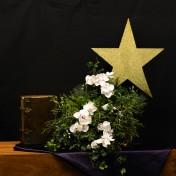 """Tweede adventzondag: Het thema van deze advent is: """"volg de ster"""". In het bloemstuk staat de ster ook voor licht in de duisternis. De kleur van advent is paars. In de stamboom van Jezus staan allerlei namen. Boaz en Ruth krijgen een zoon: Obed, wat dienaar betekent. Het symbool van trouw en hechten is klimop, wat erg bij Ruth past.De orchideeën staan voor de liefde die in dit boek Ruth een voorname rol speelt. n.a.v. Ruth 4: 9-22."""